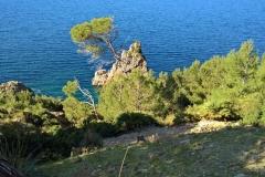 Mallorca 2019 (48)